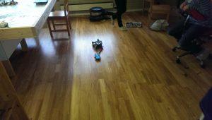 Pokemon-gåing med robot